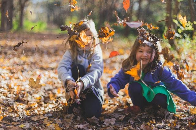 děti, holky, podzim, listí